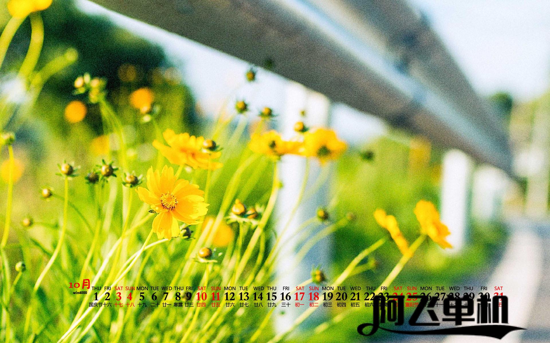 【游戏视频】三国战纪血站八方(赵云)禁令武将模式天王难度一命通关